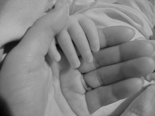 親子の手の画像