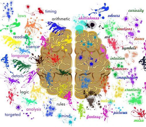 右脳・左脳のイラスト